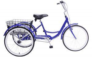 2021 Manhattan Cruisers Adult Trike in Blue